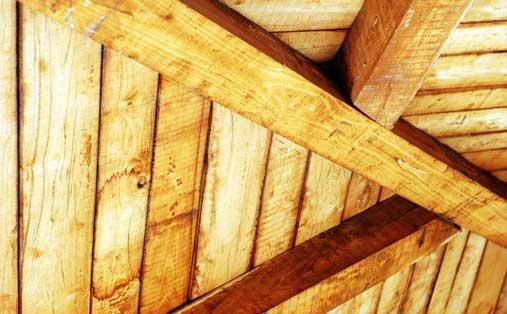 Cabane de bois